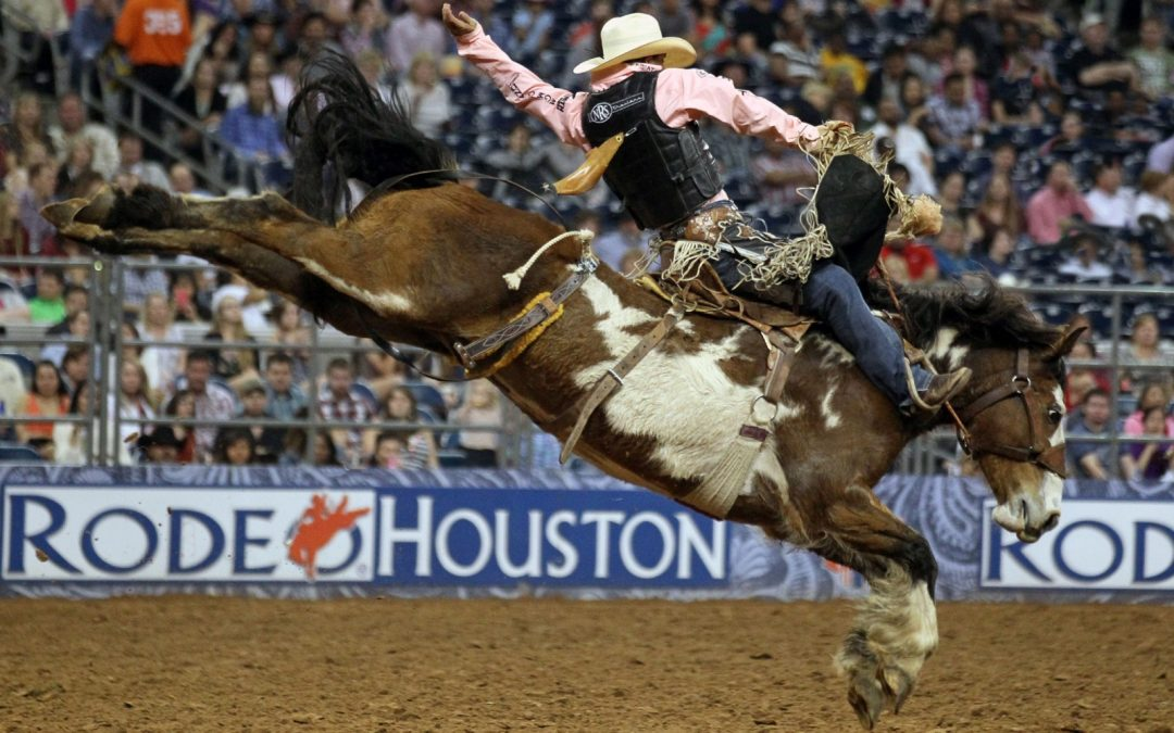 Houston Livestock Show and Rodeo(HLSR) Group Transportation Service